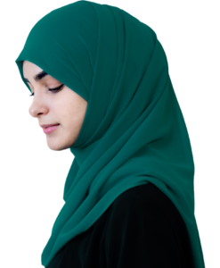 Elegant Orbit hijab