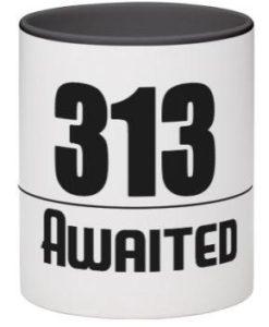 313 mugg